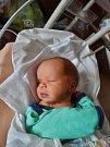 Dvojčata Filip a Jakub Procházkovi se narodila 1. června v plzeňské fakultní nemocnici mamince Lence a tatínkovi Vladimírovi ze Sušice. Starší Filip přišel na svět v 15:06 s váhou 3370 gramů a mírou 52 centimetrů, mladší Jakub se narodil o patnáct minut p