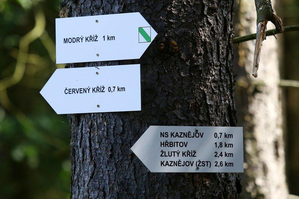 Oprámy bývalé kaolinové jámy Kaznějov - Horní Bříza.