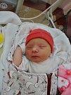 Adéla Houlíková se narodila 28. srpna v16:28 mamince Lucii Fořtové a tatínkovi Janovi zPlzně. Po příchodu na svět vplzeňské FN vážila jejich prvorozená dcerka 3180 gramů a měřila 51 cm.
