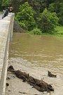 Berounku u oblíbeného Dolanského mostu by vodáci nepoznali.