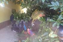 Opilý Španěl si ustlal v křoví u kulturního domu Peklo.