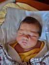 Elen Bílá se narodila 24. ledna v 10:19 mamince Sylvě. Po příchodu na svět v plzeňské fakultní nemocnici vážila sestřička dvacetileté Simony a dvanáctiletého Lukáše 4180 gramů a měřila 52 centimetrů.