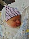 Natálie Široká se narodila 29. listopadu v8:26 mamince Lence a tatínkovi Milanovi zPlzně. Po příchodu na svět vplzeňské FN vážila jejich prvorozená dcerka 3310 gramů a měřila 49 centimetrů.