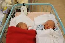 Čtyřletá Karolínka Volmutová ze Zavlekova získala 15. ledna ve 2:07 hned dva sourozence, Julii (2,30 kg) a o minutu staršího Vašíka (3,20 kg, 50 cm). Dvojčátka přišla na svět v plzeňské FN a  z jejich narození se radují také rodiče Eliška a Milan