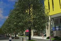 Vizualizace Corso Americká, objektu, který by měl stát na místě DK Inwest