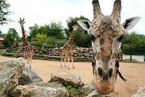Plzeňská zoo v sobotu oslavila 90. výročí od svého založení