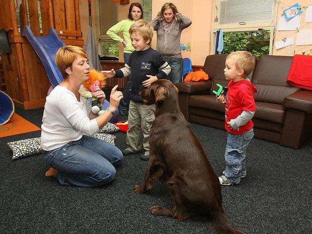 Canisterapie je metoda, při které působí speciálně cvičení psi na potřebné osoby po fyzické i psychické stránce. Včerejší terapii prováděli odborníci v plzeňském občanském sdružení Procit, které se věnuje autistickým dětem