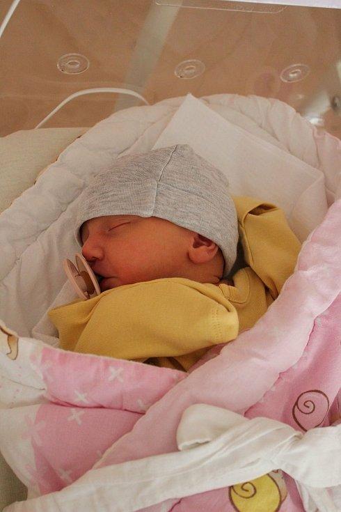 Natálie Šípová (3020 g, 48 cm) se narodila 30. května v 16:30 ve FN na Lochotíně. Rodiče Nikola a Jindřich z Plzně věděli dopředu, že jejich prvorozené miminko bude holčička.