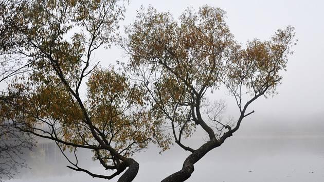 Podzim v okolí boleveckých rybníků.