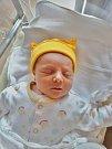 Barbora Zuzjaková se narodila 4. června v 6:32 v plzeňské fakultní nemocnici. Po příchodu na svět v plzeňské fakultní nemocnici vážila 3600 gramů.