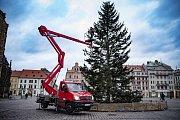 Odzdobení stromu na náměstí Republiky.