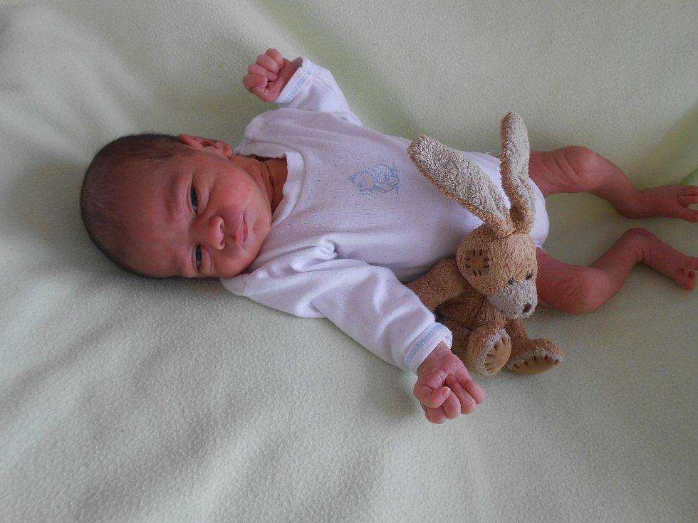 Denis J. se narodil 8. února v domažlické porodnici. Po narození vážil 2720 gramů a měřil 48 centimetrů.