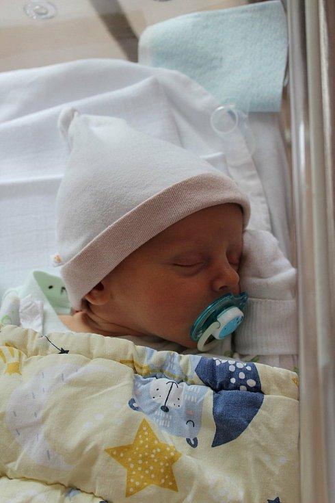 Sheludko Danylo se narodil 24. května ve 3:05 rodičům Lilii a Denysovi z Plzně. Po příchodu na svět vážil jejich prvorozený syn 3530 gramů.
