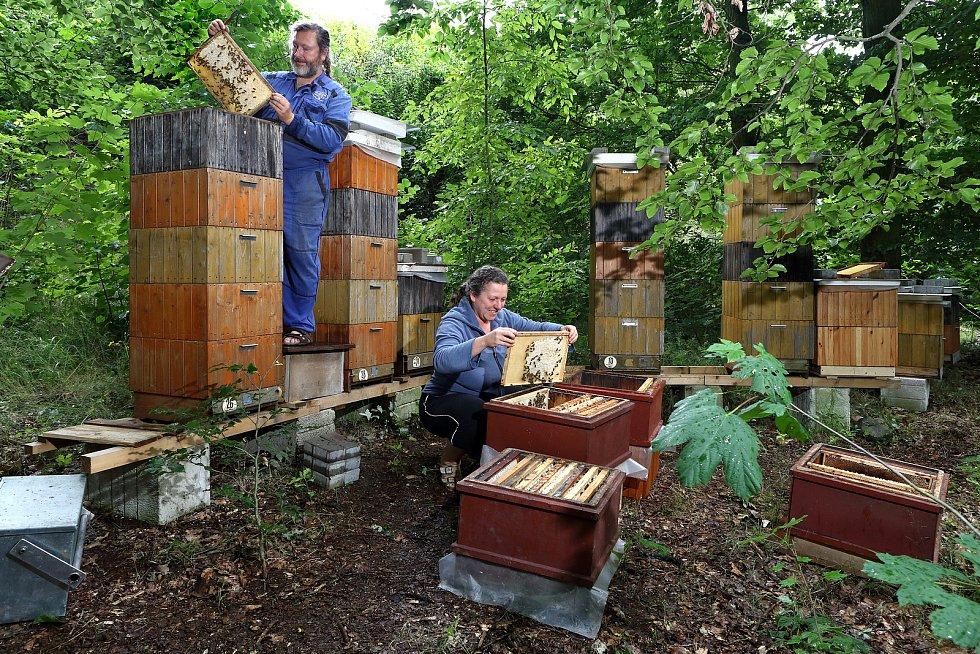 01 - Medobraní - včelaři Jana Berková a Daniel Beran na jedné ze svých sedmi včelnic. Tato je v lese nedaleko Litic u Plzně.