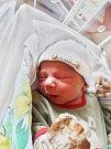 Dávid Ficzu se narodil 5. května v16:22 mamince Monice a tatínkovi Dávidovi zPlzně. Po příchodu na svět vplzeňské FN vážil jejich prvorozený synek 3210 gramů a měřil 51 centimetrů.