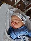 Rayan Aboalhassan se narodil 3. června ve 2:33 mamince Michale a tatínkovi Ahmedovi z Plzně. Po příchodu na svět v plzeňské fakultní nemocnici vážil bráška tříleté Safie 3120 gramů a měřil 49 centimetrů.