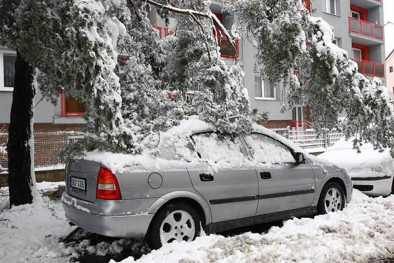 Plzeňský kraj zasypal sníh. Spadlé větve v ulici Pod Vrchem v Plzni.