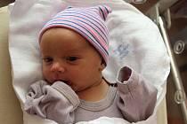 Oliver Stošek z Chotíkova se narodil ve FN na Lochotíně 22. září ve 4:50 hodin (3530 g). Rodiče Anna a Viktor dopředu věděli, že jejich prvorozené děťátko bude chlapeček.