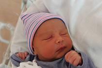 Tomáš Procházka se narodil 4. listopadu ve 23:01 mamince Kláře a tatínkovi Rodrickovi ze Štěnovic. Po příchodu na svět ve FN na Lochotíně vážil jejich prvorozený synek 2820 gramů a měřil 48 centimetrů.