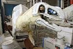 Příprava dinosaurů do Dinoparku