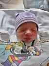 Vojtěch Kamínek se narodil 8. listopadu ve 2:42 mamince Lence a tatínkovi Miroslavovi zBoru u Tachova. Po příchodu na svět vplzeňské FN vážil bráška dvouletého Jakuba 3545 gramů a měřil 51 cm.