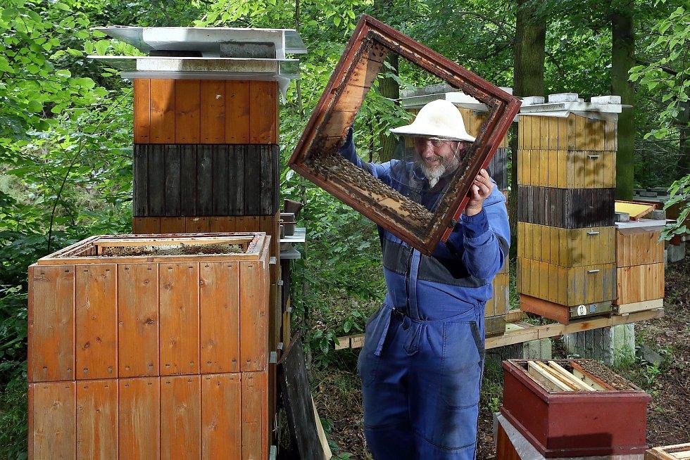 16 - Včelaření zabírá spoustu času a je i fyzicky namáhavé.