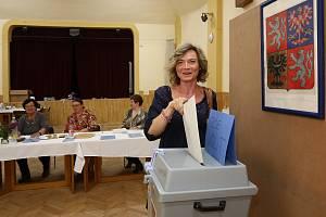 Volby do Evropského parlamentu ve Šťáhlavicích