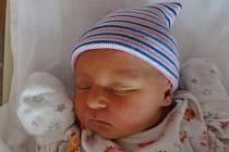 Lilien Nekvapilová se narodila 10. listopadu ve 3:20 mamince Lence a tatínkovi Filipovi zPlzně. Po příchodu na svět vplzeňské FN vážila sestřička skoro dvouleté Nelly 2970 gramů a měřila 49 cm.