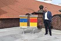 Plzeňská radnice má na střeše dva včelí úly.
