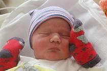 Šarlota Bohunčáková se narodila 1. července mamince Šárce. Po příchodu na svět v plzeňské porodnici na Lochotíně vážila sestřička čtyřletého Honzíka 3270 gramů a měřila 48 centimetrů.