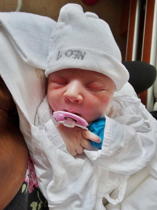 Tereza Blechová se narodila 12. června ve 21:05 mamince Kateřině a tatínkovi Tomášovi z Plzně Radčic. Po příchodu na svět ve FN vážila jejich prvorozená dcerka 3360 gramů a měřila 50 cm