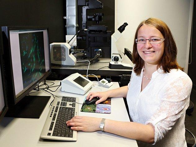 Michaela Miklíková pracuje v Biomedicínském centru v Plzni, v září ale kvůli svému výzkumu mezenchymálních buněk odjíždí na univerzitu do americké Kalifornie.