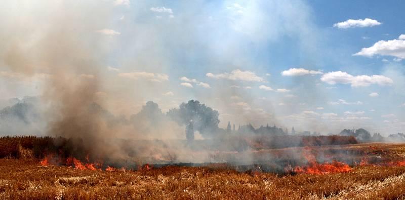 Požár obilného lánu u Chodové Plané