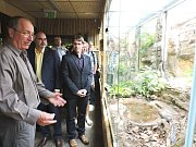 Nově otevřená expozice v plzeňské zoo nabízí  dvanáctku nejjedovatějších hadů světa.