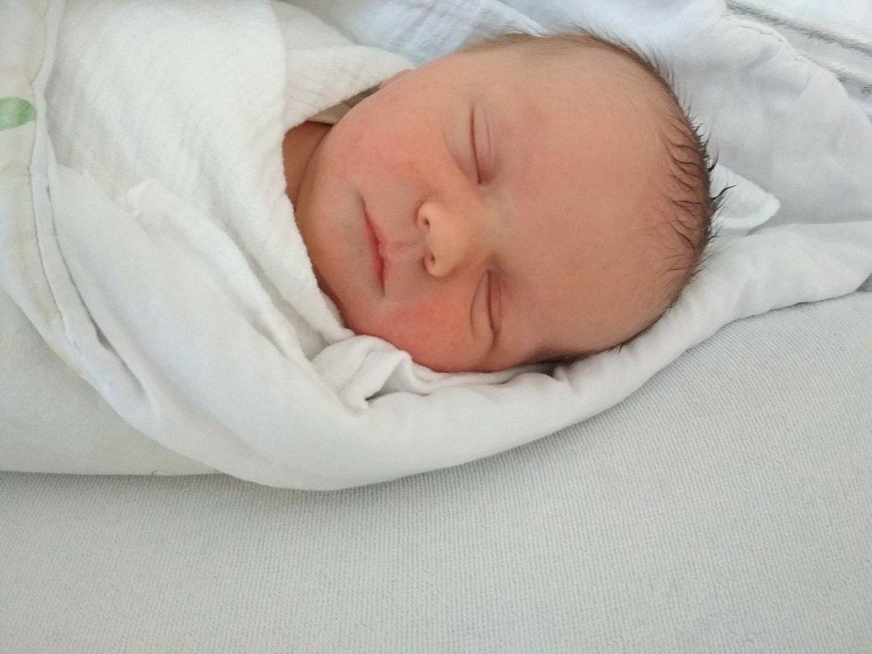 David Marek z Klatov se narodil v klatovské porodnici 27. dubna v 8:50 hodin (50 cm, 3810 g). Rodiče Lucie a Tomáš věděli dopředu, že se jim narodí chlapeček.