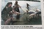 Plzeňský deník, 21. 6. 2005