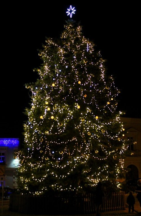 Vánoční strom v Dobřanech na jižním Plzeňsku