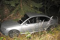 Řidič audi se střetl u Rosovic s daňkem. Auto sjelo do příkopu a narazilo do náletových dřevin.