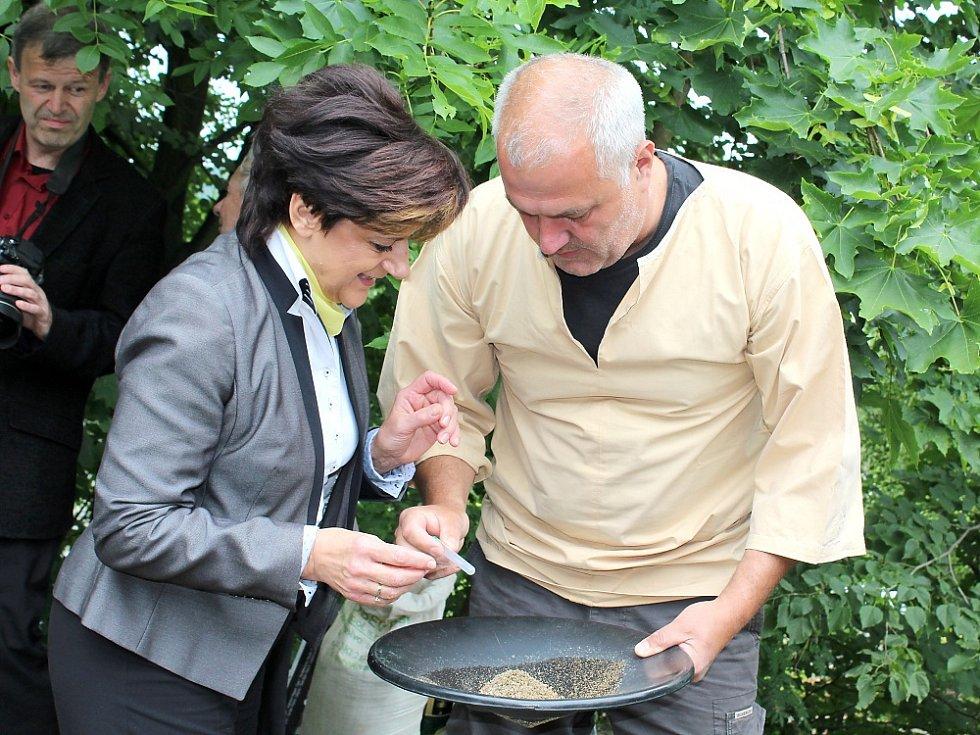 Sobotní hornické slavnosti na Březových Horách, jejichž součástí bylo otevření nové dlouho připravované výstavní expozice na Anně. Zájemci si mohli narýžovat zlatíčko.
