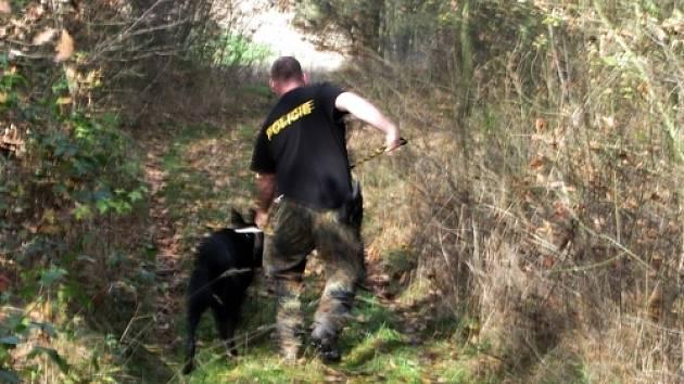 Při pátrání po ukradeném poštovním voze pomáhali také psovodi a vrtulník