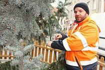 Příbramské technické služby při zdobení vánočního stromu na Václavském náměstí.
