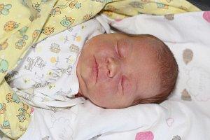 Františka Dvořáková se narodila 10. listopadu 2018 s váhou 3,59 kg a mírou 50 cm Petře a Honzovi z Líbeňě. Doma se těší Matěj (8) a Amálka (1).