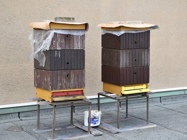 Odva úly na střeše příbramského kulturního domu se budou starat děti ze včelařského kroužku.