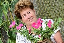 Lidé v Březnici oživili nábřeží výstavou květin.