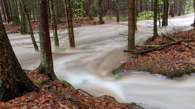 CHKO Brdy - rozvodněný Třítrubecký potok.