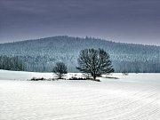 "Petráškova hora u Vacíkova v zimním ""hábitu""."