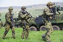 Vojáci (ilustrační foto).