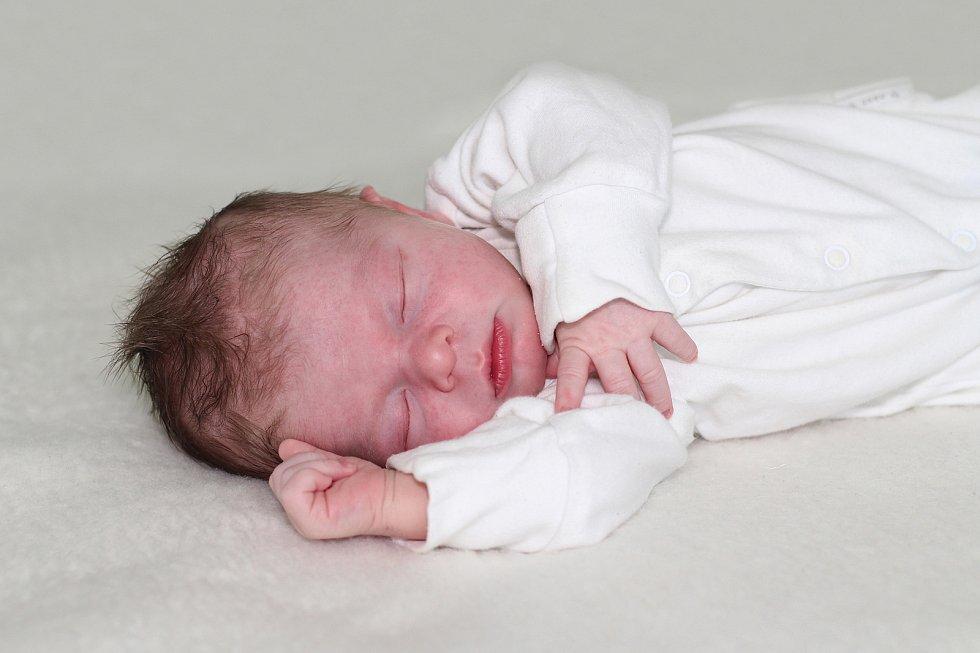Pavel Dvořák se narodil 29. ledna 2019 s váhou 3,78 kg a mírou 52 cm Ireně a Pavlovi z Úklidu.