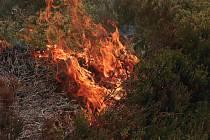 Řízený požár na Jordánu z jara 2016.