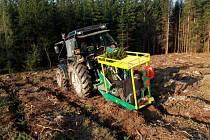 Vykácené plochy smrkových porostů se nově zalesňují především bukem, dubem nebo jedlí. V posledních letech je podíl těchto dřevin ve výsadbě Městských lesů Příbram až 75 procent.